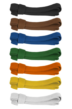 Martial art belts in consecutive colors. Isolated on white.